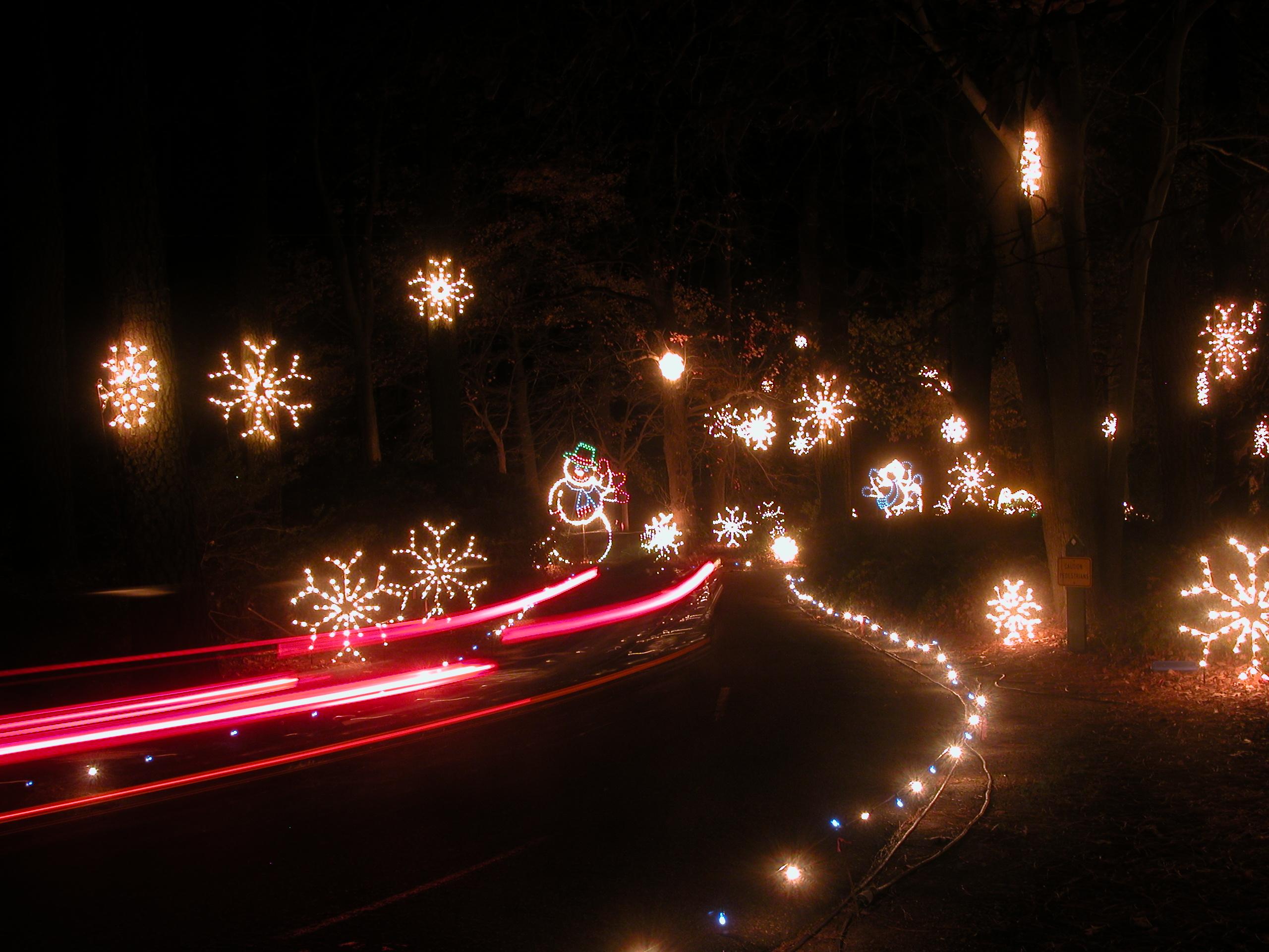 Norfolk Botanical Garden To Light Up For Christmas 13newsnow Com